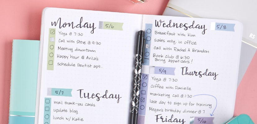 Dot Grid Two-Sided Dashboard 4 use with Erin Condren Life Planner